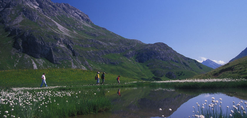 Austria_Lech-summer_Lake-view.jpg